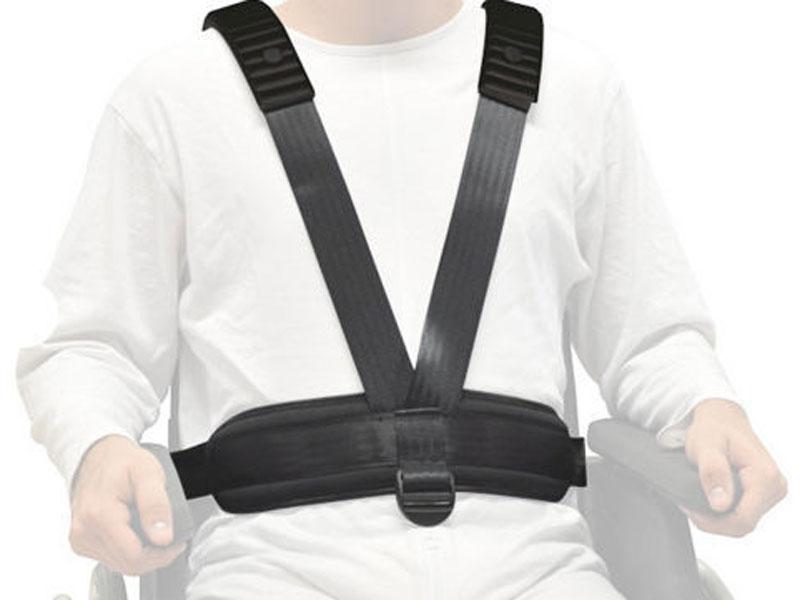 輪椅約束帶